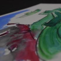 disegni e foto Arianna Pasolini