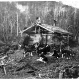 Capanna nello Yukon, inizio secolo XX