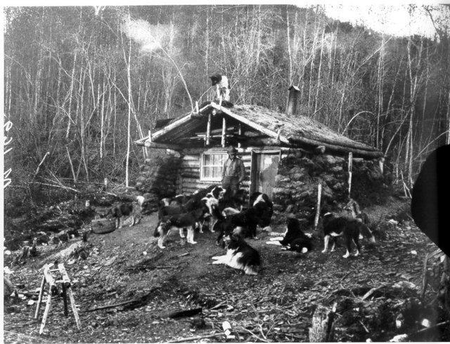 Cabin_on_the_Yukon_Flats