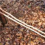 Bastoni della repubblica, cedro deodara e altro legno