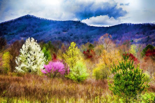 John Haldane - Appalachian spring in the holler